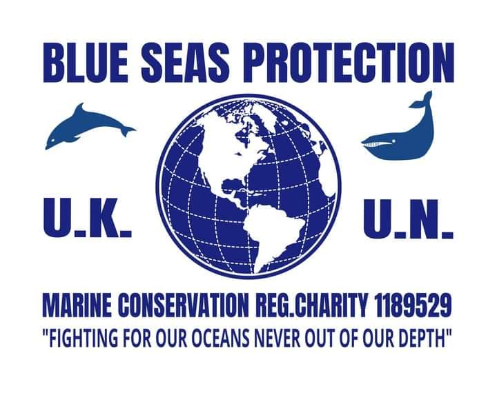 Blue Seas Protection logo